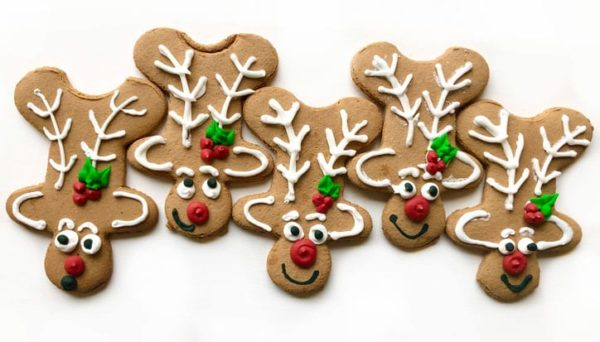 blog - 020 holiday gift guide - ginger dear